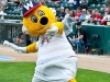 Goldie - Winnipeg Goldeyes