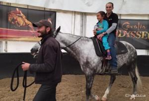 Cavalia Odysseo - Child Horse