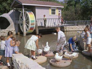 Aunt Sally's Farm